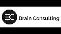brain-consulting-ref